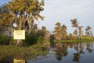 Bayou Desert, St. John the Baptist Parish, LA