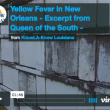 Yellow Fever in Antebellum New Orleans - An Excerpt from Queen of the South