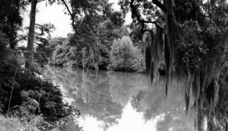 Swamps in Literature, Film, and Folklore