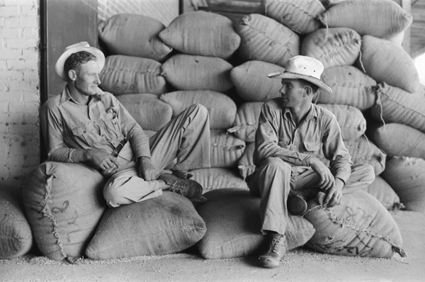 Farmers sitting on bags of rice, state mill, Abbeville, Louisiana