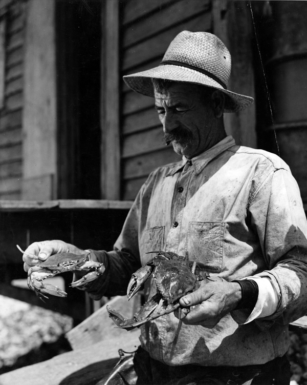 """Louisiana fisherman holding crabs"" by Fonville Winans"