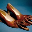 Alligator Shoes (Thom McCann Eat Your Heart Out)