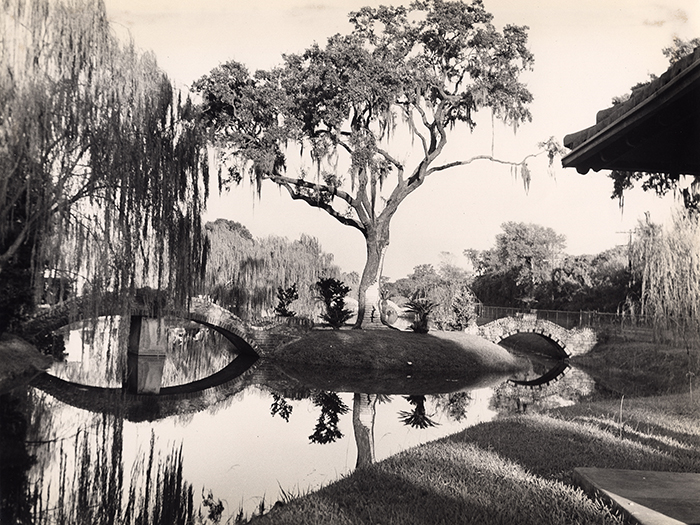 Lagoon and Trees, Metairie Cemetery