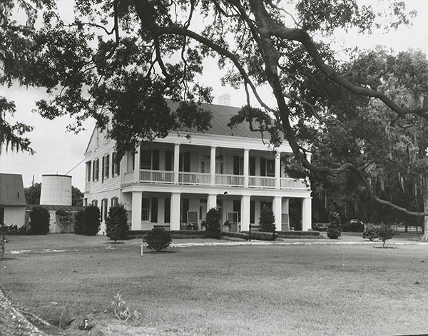 Mulberry Grove Plantation
