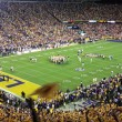 LSU-Football-Game