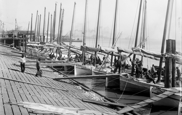 Oyster Luggers docking at Lugger Landing (ca. 1900). Courtesy of the Library of Congress