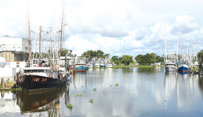 Shrimp boats in Dulac, La. Photo by Cheryl Gerber