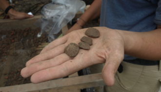 Archaeology of the New Orleans Area