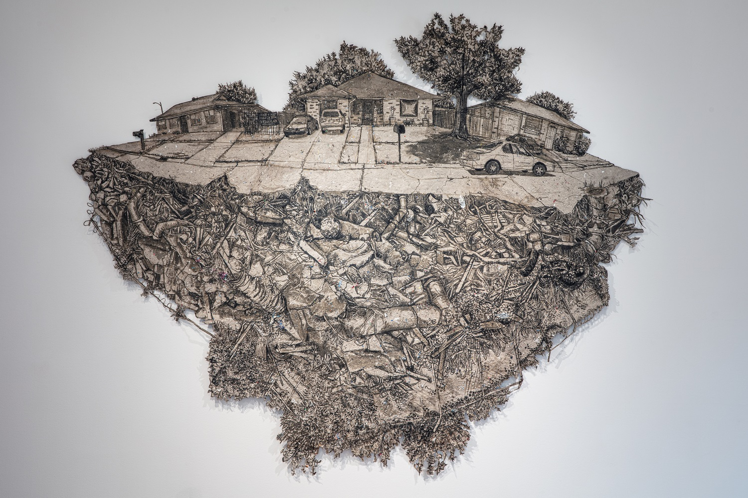 Images of the Anthropocene